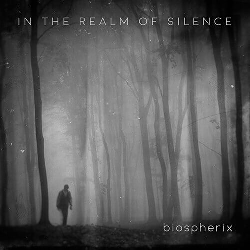 In The Realm Of Silence
